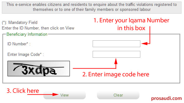 Check Traffic Website Online